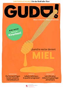 GuDD 4 Cover